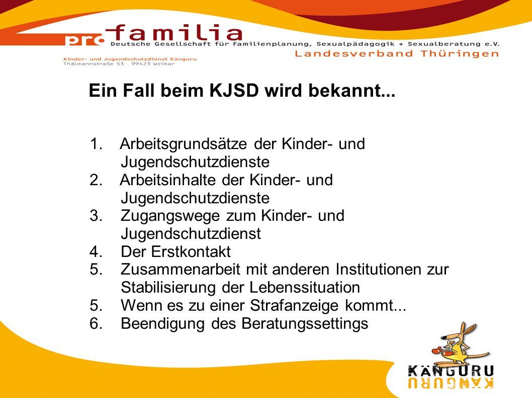 1. Arbeitsgrundsätze der Kinder- und Jugendschutzdienste 2.