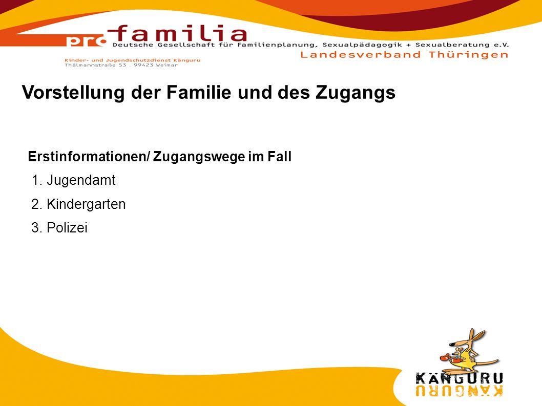 Erstinformationen/ Zugangswege im Fall 1. Jugendamt 2.