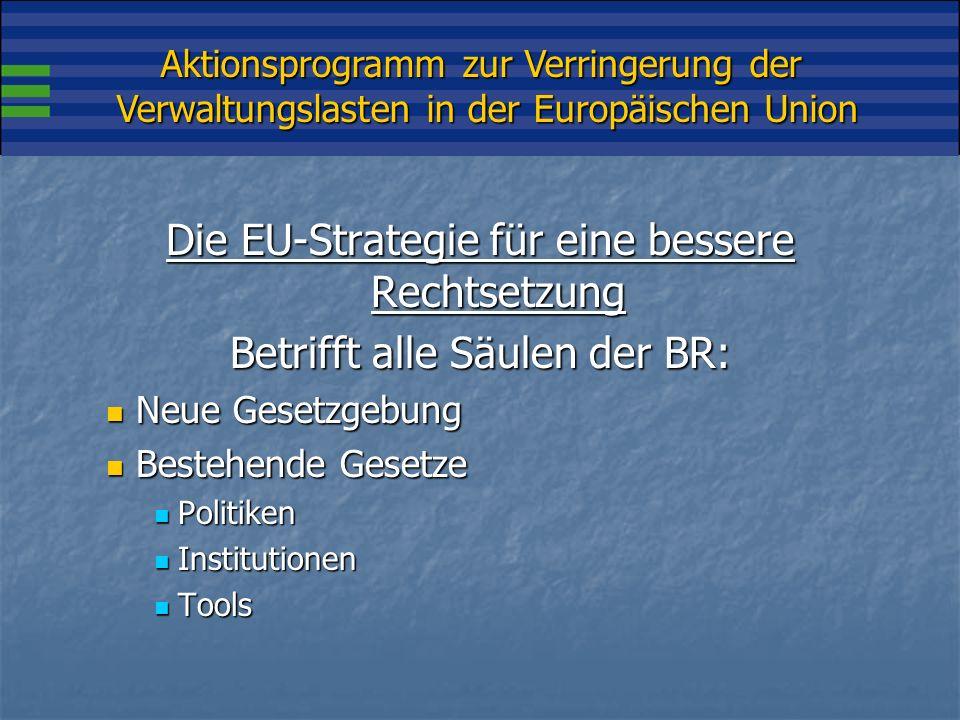 Aktionsprogramm zur Verringerung der Verwaltungslasten in der Europäischen Union Die EU-Strategie für eine bessere Rechtsetzung Betrifft alle Säulen der BR: Neue Gesetzgebung Neue Gesetzgebung Bestehende Gesetze Bestehende Gesetze Politiken Politiken Institutionen Institutionen Tools Tools