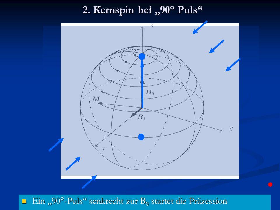 """2. Kernspin bei """"90° Puls"""" Ein """"90°-Puls"""" senkrecht zur B 0 startet die Präzession Ein """"90°-Puls"""" senkrecht zur B 0 startet die Präzession"""