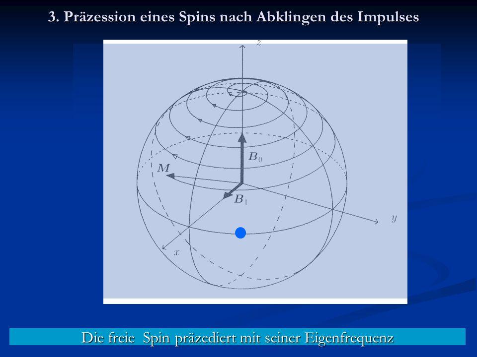 Die freie Spin präzediert mit seiner Eigenfrequenz 3.