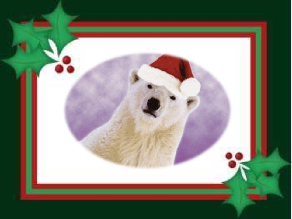 Die Tiere diskutierten einmal über Weihnachten.
