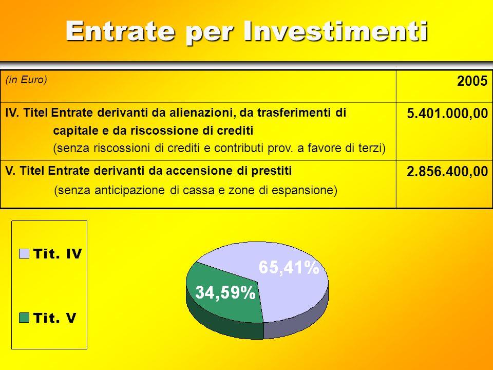 Einnahmen für Investitionen (in Euro) 2005 IV. Titel Einnahmen aus Veräußerung, Kapitalzuweisungen u. Einhebung von Guthaben (ohne Einhebung von Gutha