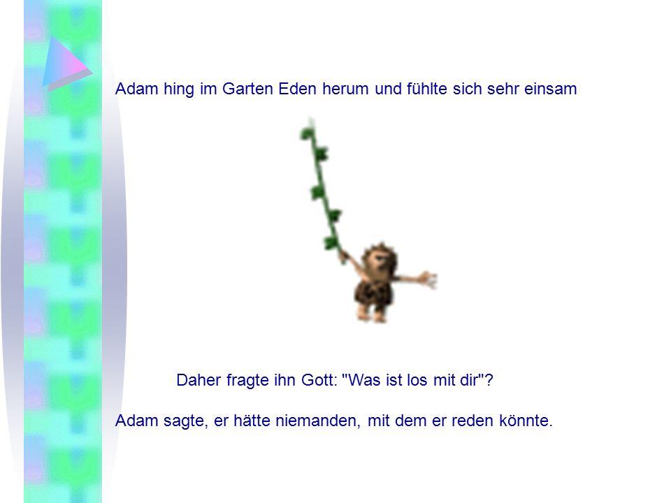 Adam hing im Garten Eden herum und fühlte sich sehr einsam Daher fragte ihn Gott: