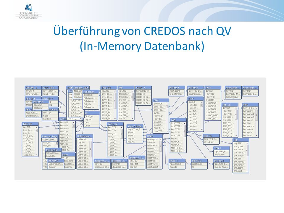 Überführung von CREDOS nach QV (In-Memory Datenbank)
