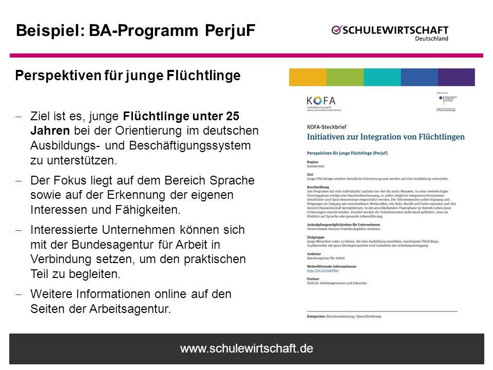 www.schulewirtschaft.de Beispiel: BA-Programm PerjuF Perspektiven für junge Flüchtlinge  Ziel ist es, junge Flüchtlinge unter 25 Jahren bei der Orien
