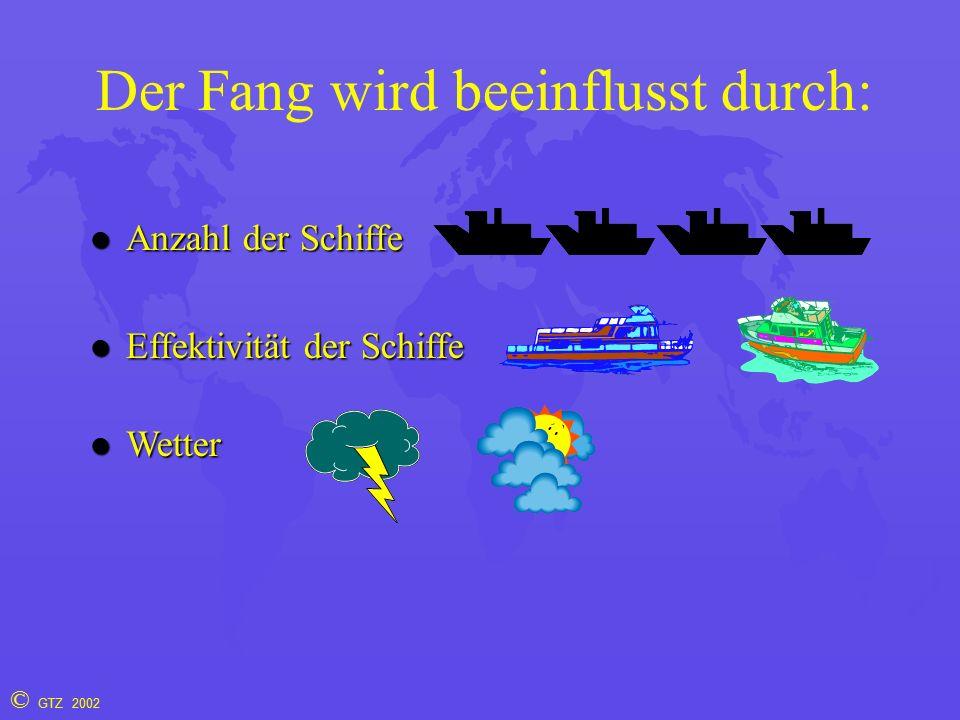 © GTZ 2002 Der Fang wird beeinflusst durch: l Anzahl der Schiffe l Effektivität der Schiffe l Wetter