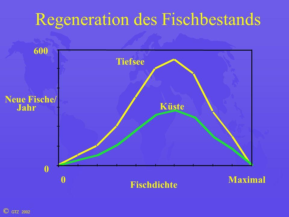 © GTZ 2002 Regeneration des Fischbestands Fischdichte Neue Fische/ Jahr 0 0 Maximal Tiefsee Küste 600