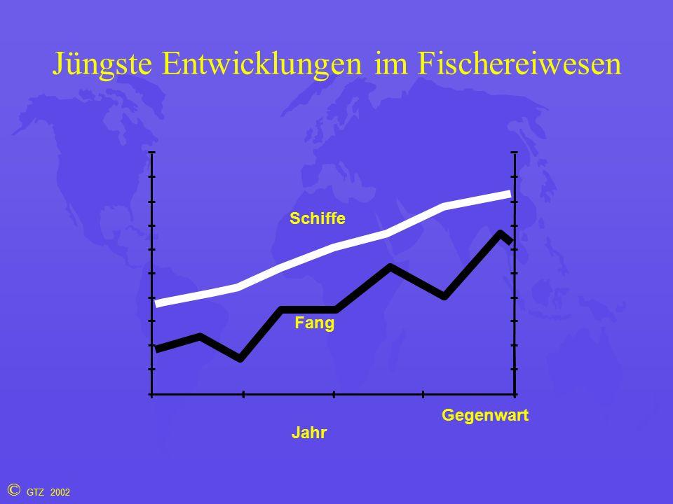 © GTZ 2002 Jüngste Entwicklungen im Fischereiwesen Jahr Fang Schiffe Gegenwart