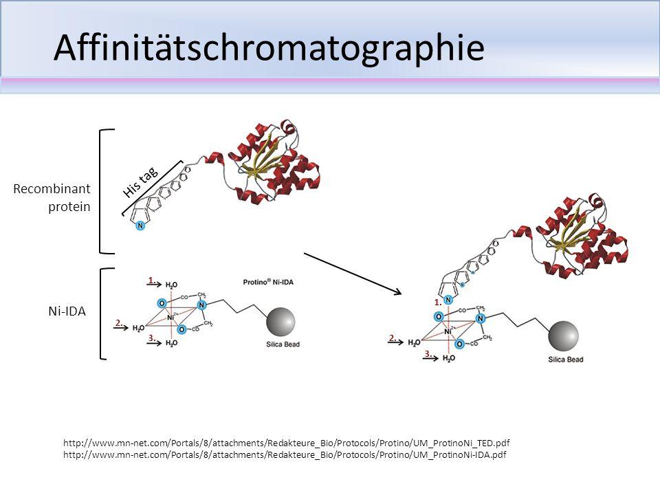 Affinitätschromatographie Recombinant protein His tag Ni-IDA http://www.mn-net.com/Portals/8/attachments/Redakteure_Bio/Protocols/Protino/UM_ProtinoNi
