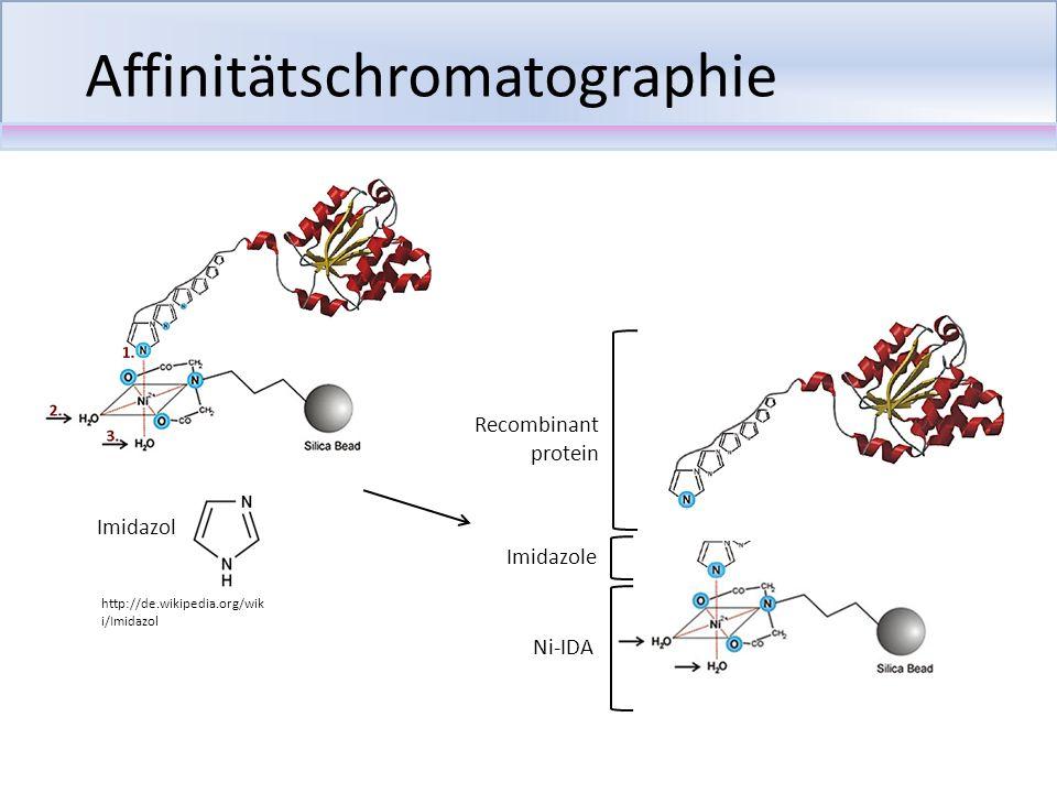 Affinitätschromatographie Imidazol Ni-IDA Imidazole Recombinant protein http://de.wikipedia.org/wik i/Imidazol