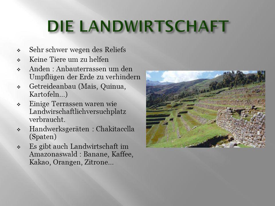  Sehr schwer wegen des Reliefs  Keine Tiere um zu helfen  Anden : Anbauterrassen um den Umpflügen der Erde zu verhindern  Getreideanbau (Mais, Qui