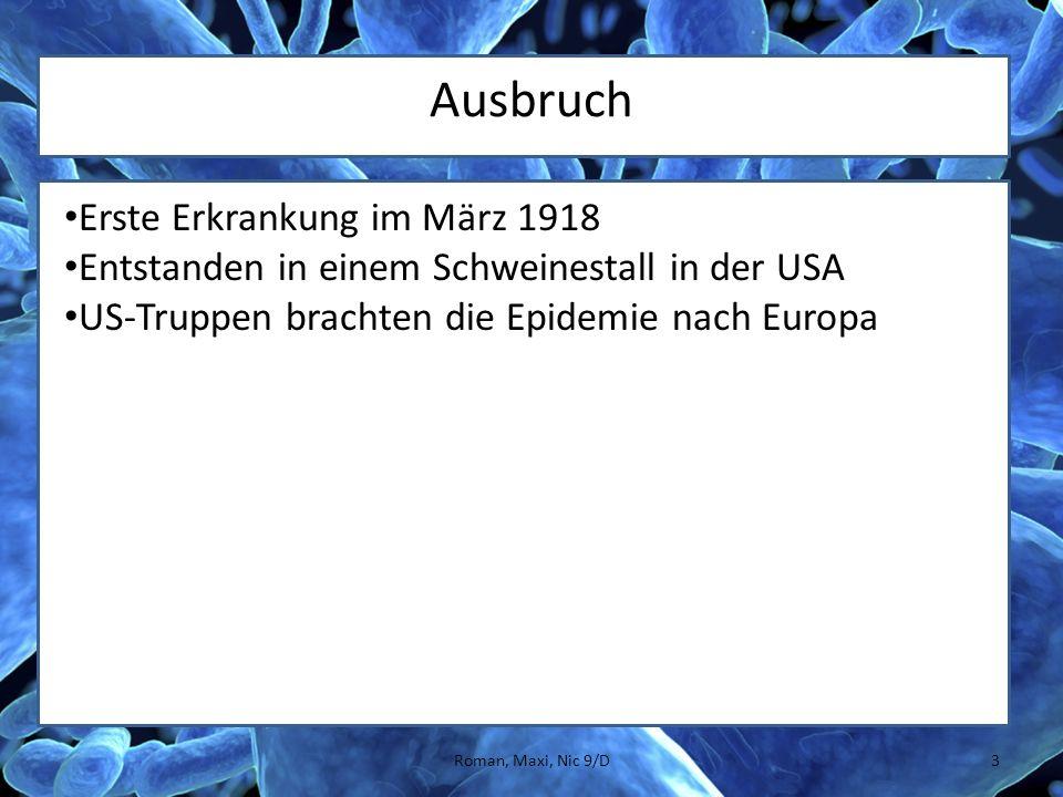 Ausbruch Erste Erkrankung im März 1918 Entstanden in einem Schweinestall in der USA US-Truppen brachten die Epidemie nach Europa 3Roman, Maxi, Nic 9/D