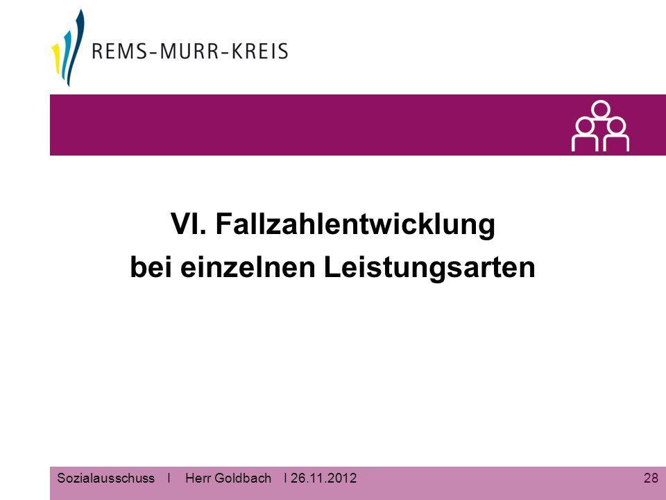 28Sozialausschuss I Herr Goldbach I 26.11.2012 VI. Fallzahlentwicklung bei einzelnen Leistungsarten