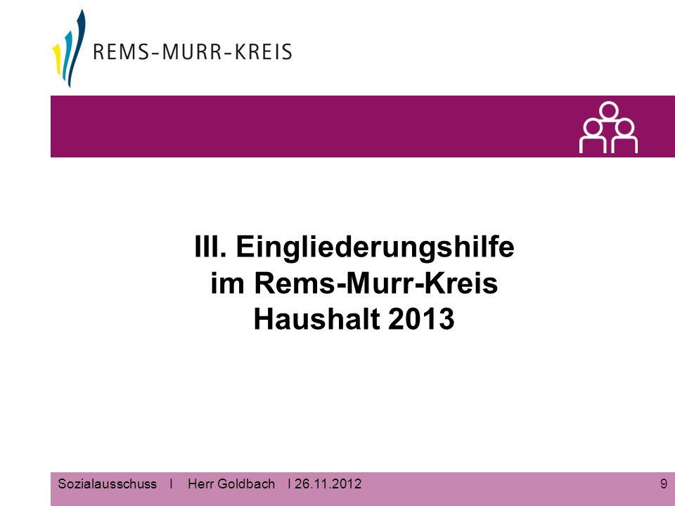 9 III. Eingliederungshilfe im Rems-Murr-Kreis Haushalt 2013