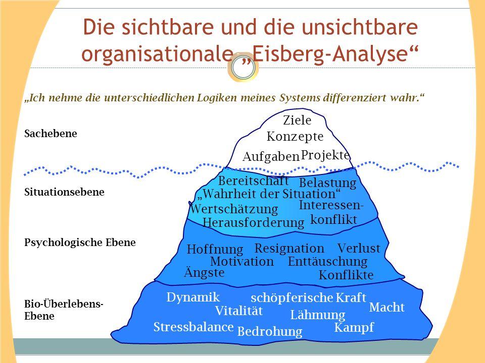 """Die sichtbare und die unsichtbare organisationale """"Eisberg-Analyse"""" Situationsebene Herausforderung Interessen- konflikt Wertschätzung """"Wahrheit der S"""