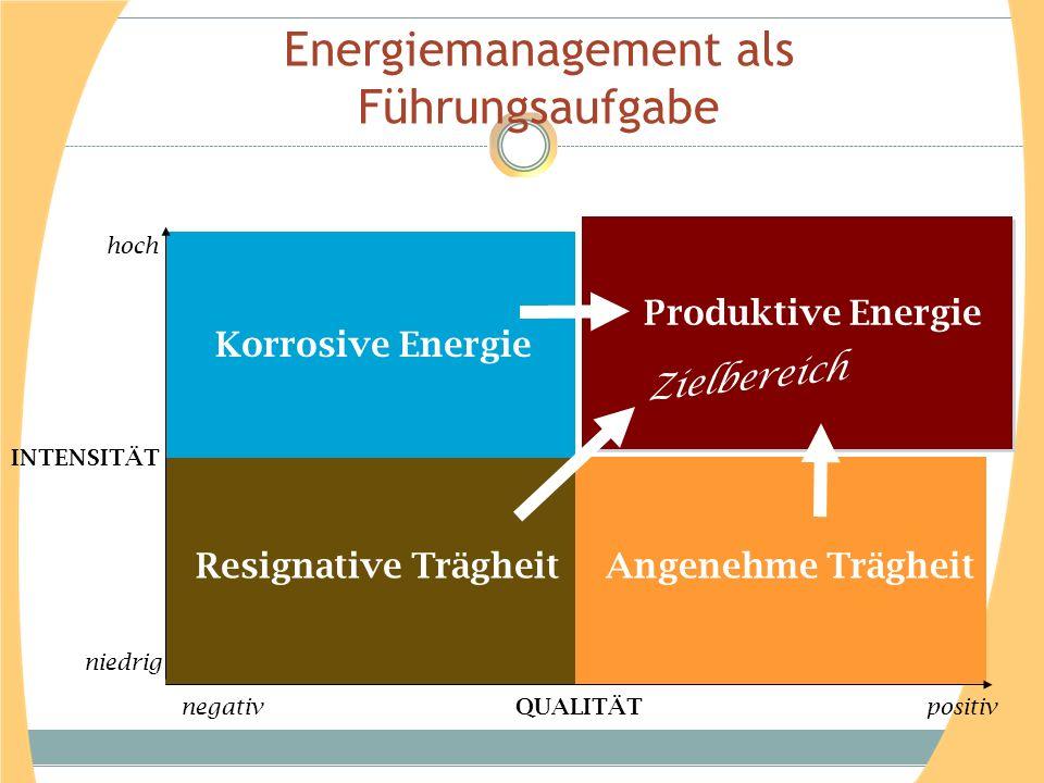 Energiemanagement als Führungsaufgabe Korrosive Energie Produktive Energie Resignative Trägheit Angenehme Trägheit Zielbereich INTENSITÄT QUALITÄT neg