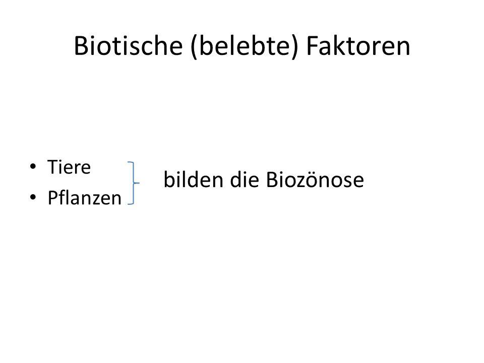 Zusammenspiel im Ökosystem Biozönose (Pflanzen/Tiere) besiedeln Biotop (unbelebten Lebensraum)