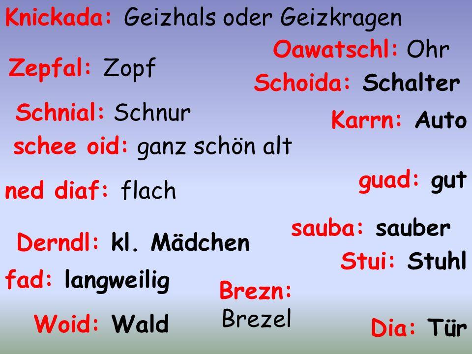 EineÜbersetzungshilfe für norddeutsche Underdogs. Boarische Spracheigenheiten. Eine Übersetzungshilfe für norddeutsche Underdogs. Boarische Spracheige