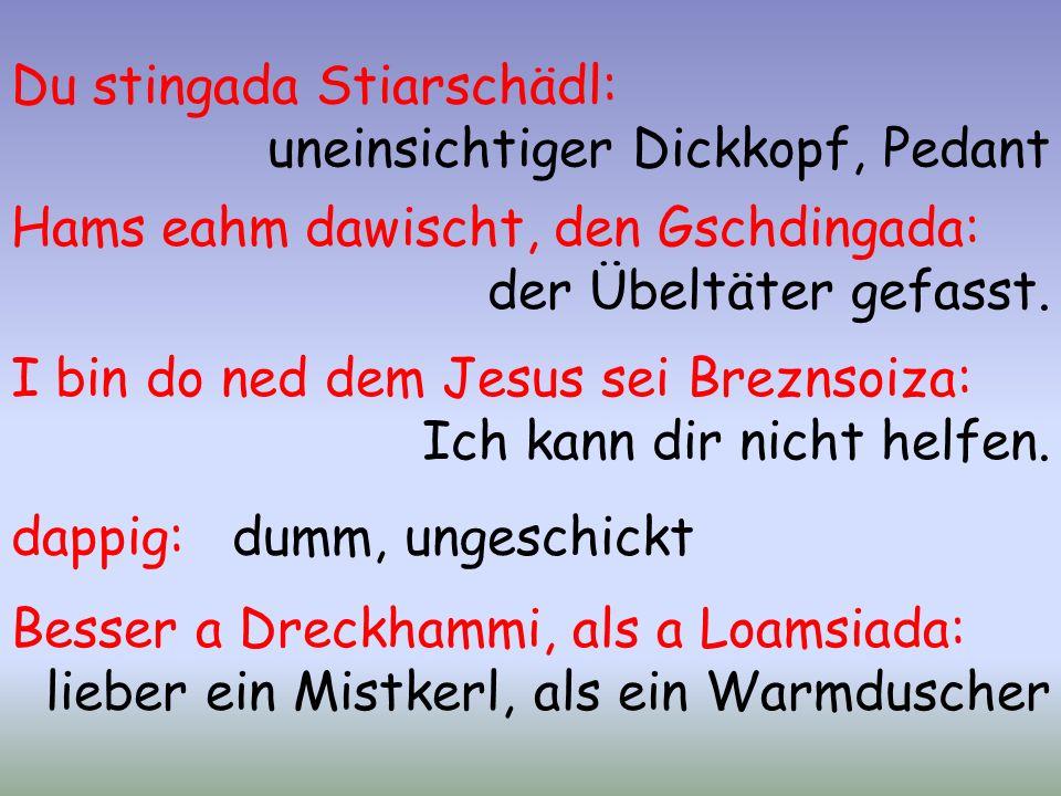 Du stingada Stiarschädl: uneinsichtiger Dickkopf, Pedant Hams eahm dawischt, den Gschdingada: der Übeltäter gefasst.
