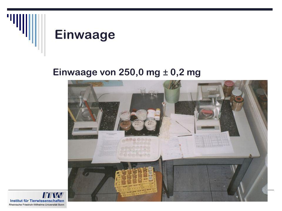 9 Einwaage Einwaage von 250,0 mg ± 0,2 mg