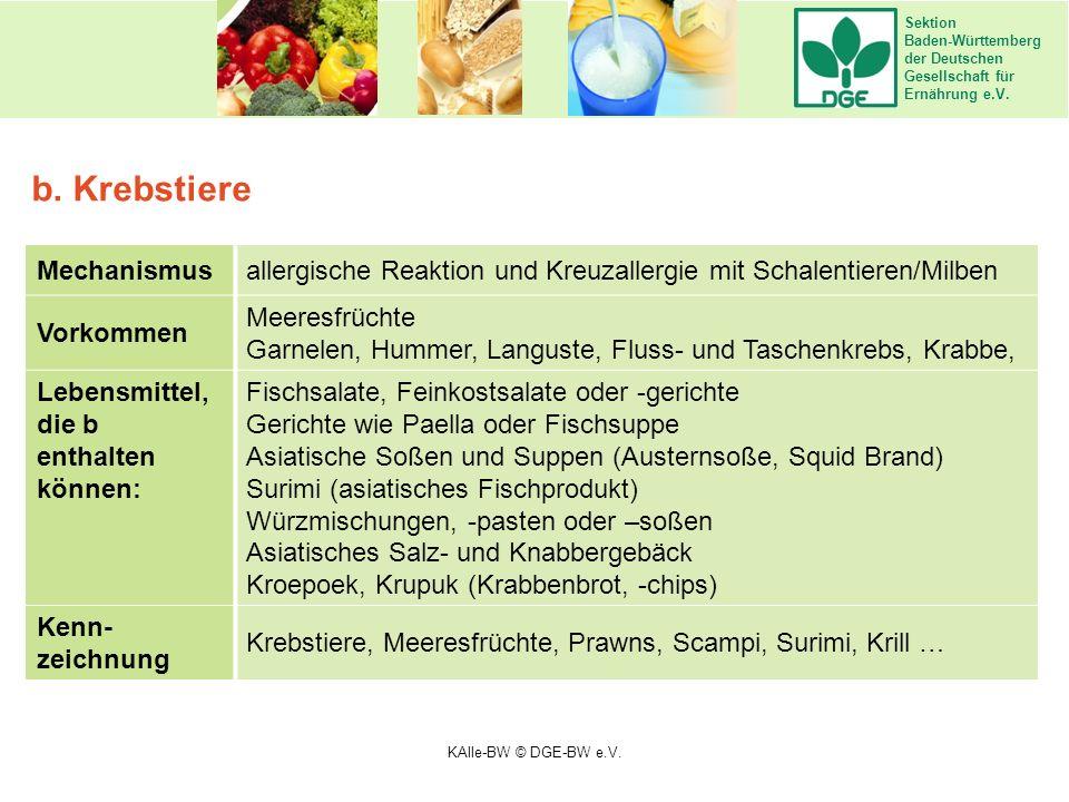 Sektion Baden-Württemberg der Deutschen Gesellschaft für Ernährung e.V. Mechanismusallergische Reaktion und Kreuzallergie mit Schalentieren/Milben Vor