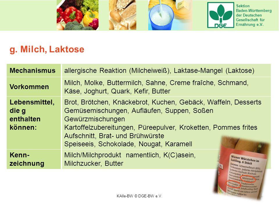 Sektion Baden-Württemberg der Deutschen Gesellschaft für Ernährung e.V. Mechanismusallergische Reaktion (Milcheiweiß), Laktase-Mangel (Laktose) Vorkom