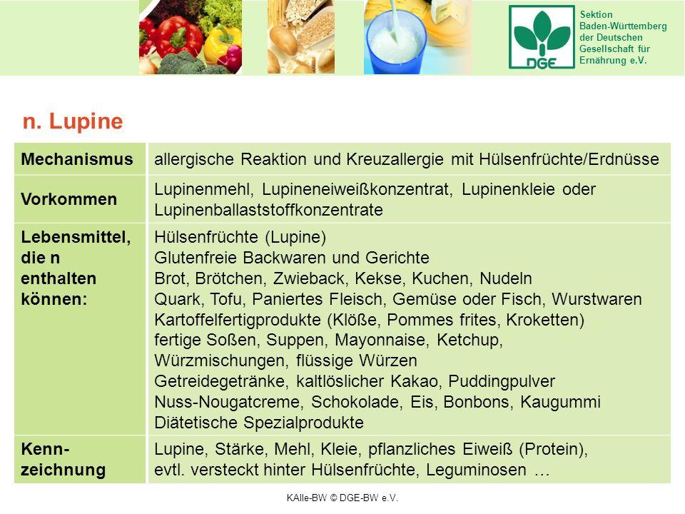 Sektion Baden-Württemberg der Deutschen Gesellschaft für Ernährung e.V. Mechanismusallergische Reaktion und Kreuzallergie mit Hülsenfrüchte/Erdnüsse V