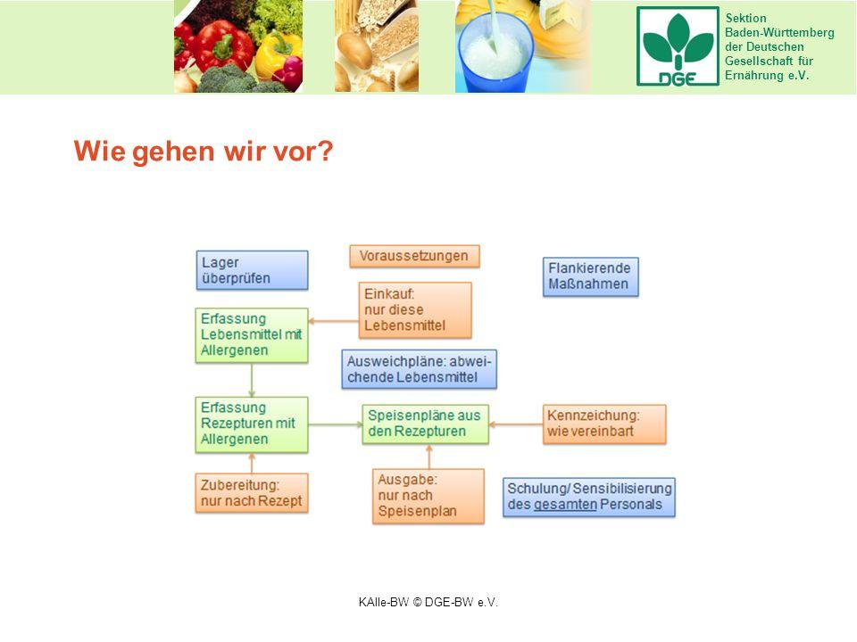 Sektion Baden-Württemberg der Deutschen Gesellschaft für Ernährung e.V. Wie gehen wir vor? KAlle-BW © DGE-BW e.V.