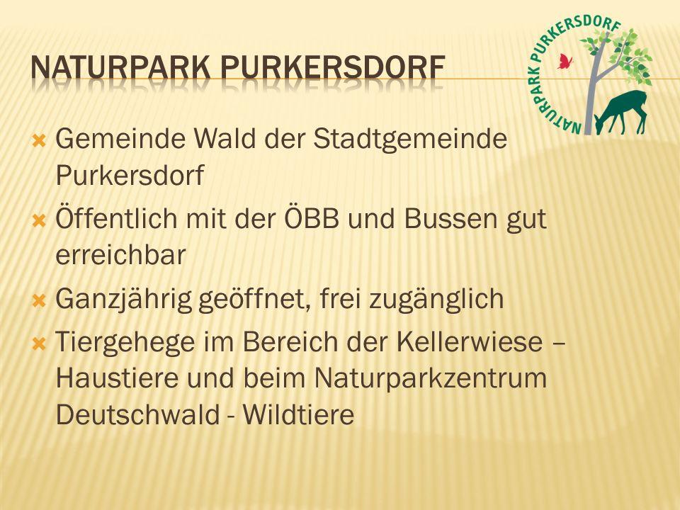  Gemeinde Wald der Stadtgemeinde Purkersdorf  Öffentlich mit der ÖBB und Bussen gut erreichbar  Ganzjährig geöffnet, frei zugänglich  Tiergehege i