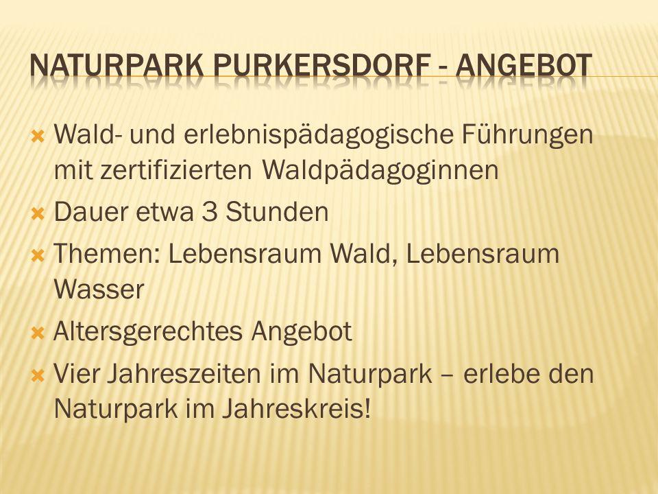  Wald- und erlebnispädagogische Führungen mit zertifizierten Waldpädagoginnen  Dauer etwa 3 Stunden  Themen: Lebensraum Wald, Lebensraum Wasser  A