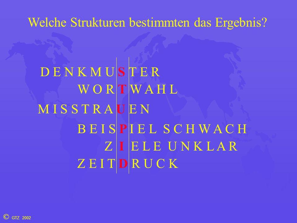 © GTZ 2002 Welche Strukturen bestimmten das Ergebnis.