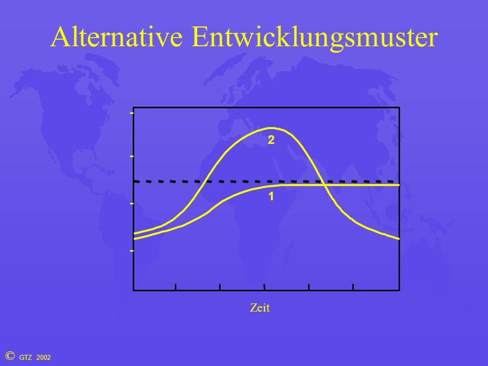 © GTZ 2002 Alternative Entwicklungsmuster 1 2 Zeit - - - -