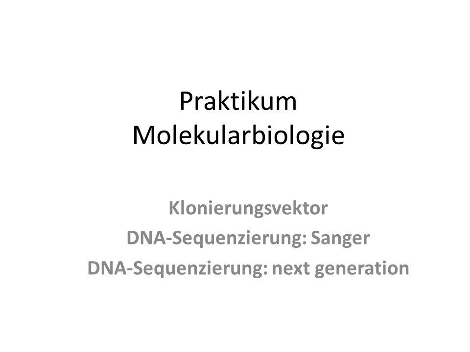 Praktikum Molekularbiologie Klonierungsvektor DNA-Sequenzierung: Sanger DNA-Sequenzierung: next generation