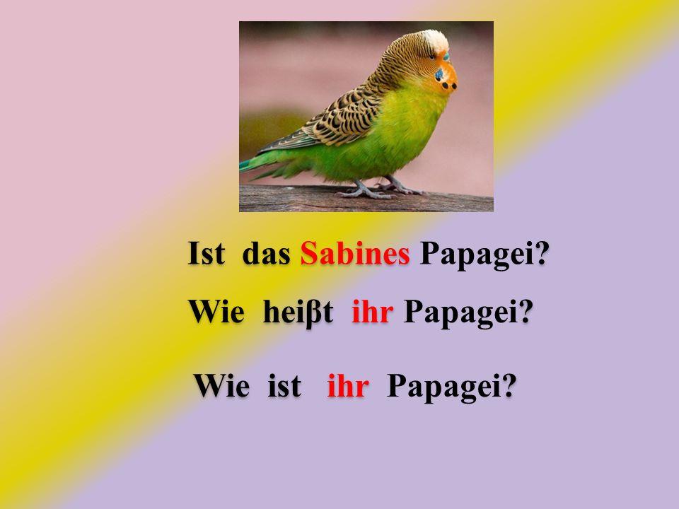 Ist das Sabines . Ist das Sabines Papagei. Wie heiβt ihr .