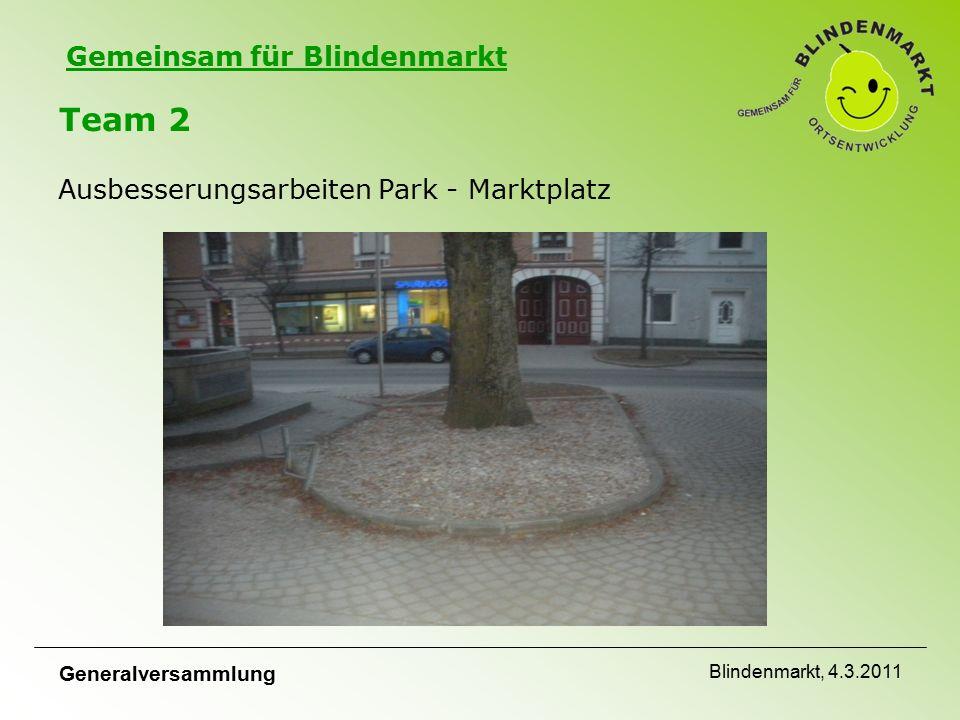 Gemeinsam für Blindenmarkt Team 2 Ausbesserungsarbeiten Park - Marktplatz Generalversammlung Blindenmarkt, 4.3.2011