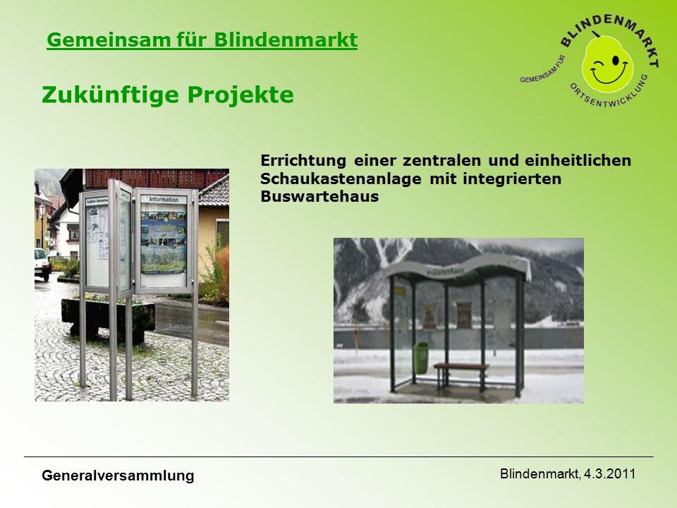 Gemeinsam für Blindenmarkt Zukünftige Projekte Errichtung einer zentralen und einheitlichen Schaukastenanlage mit integrierten Buswartehaus Generalversammlung Blindenmarkt, 4.3.2011