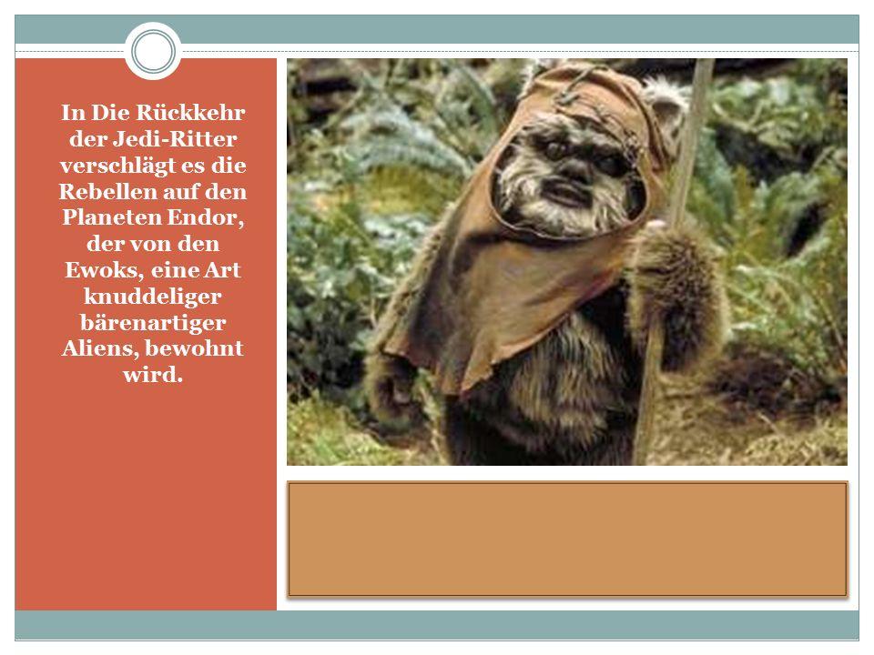 In Die Rückkehr der Jedi-Ritter verschlägt es die Rebellen auf den Planeten Endor, der von den Ewoks, eine Art knuddeliger bärenartiger Aliens, bewohnt wird.