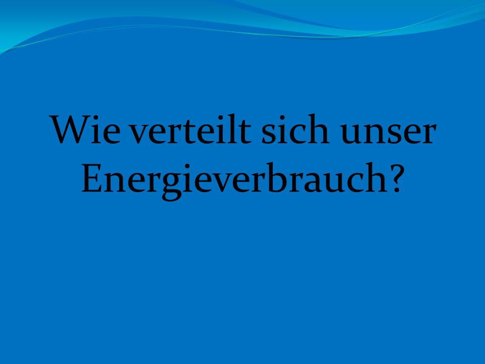 Wie verteilt sich unser Energieverbrauch