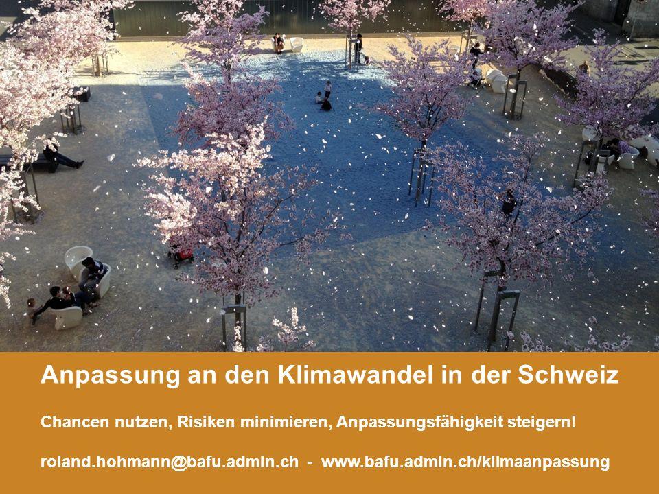 10 Anpassung an den Klimawandel in der Schweiz Roland Hohmann, BAFU Anpassung an den Klimawandel in der Schweiz Chancen nutzen, Risiken minimieren, Anpassungsfähigkeit steigern.