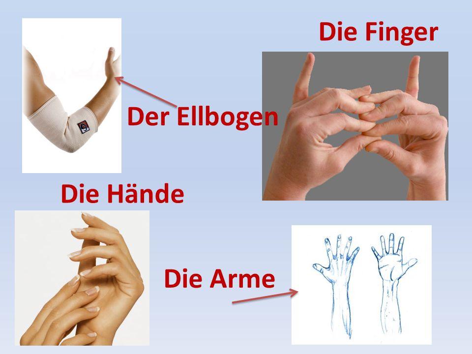 Die Arme Die Hände Die Finger Der Ellbogen