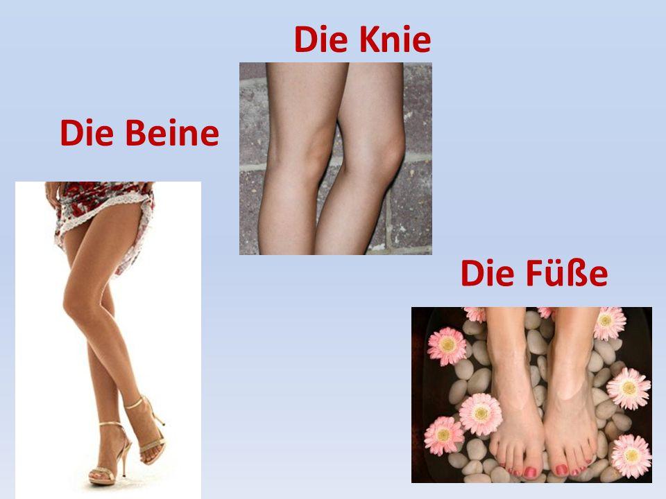Die Beine Die Knie Die Füße