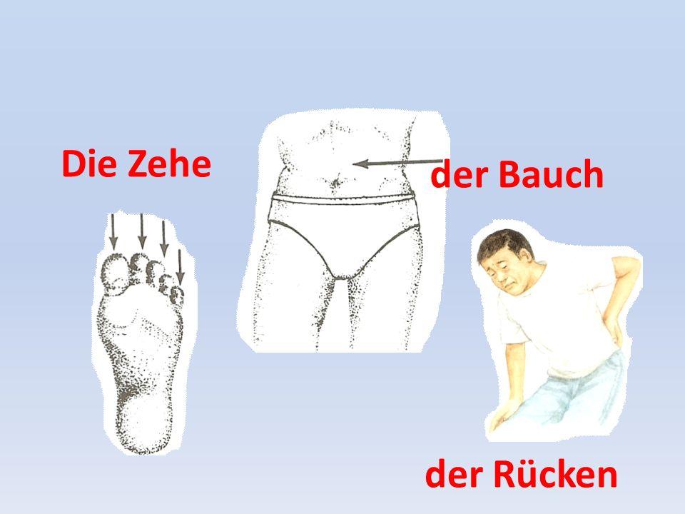 der Rücken der Bauch Die Zehe