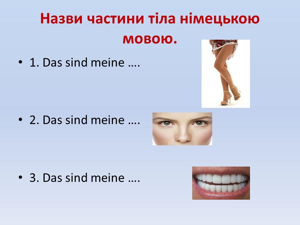 Назви частини тіла німецькою мовою. 1. Das sind meine …. 2. Das sind meine …. 3. Das sind meine ….