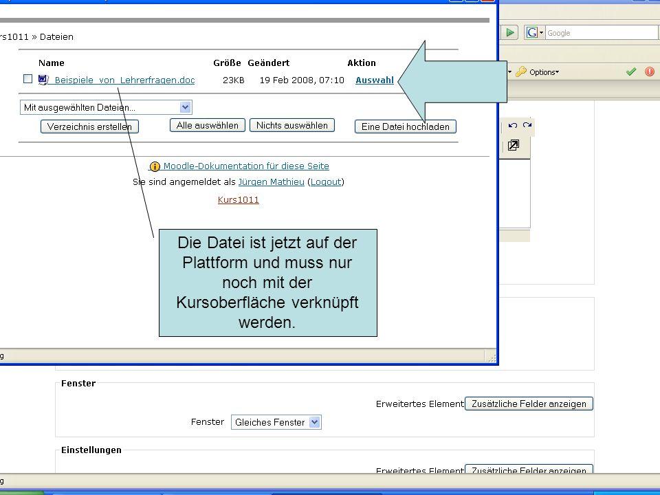 Die Datei ist jetzt auf der Plattform und muss nur noch mit der Kursoberfläche verknüpft werden.