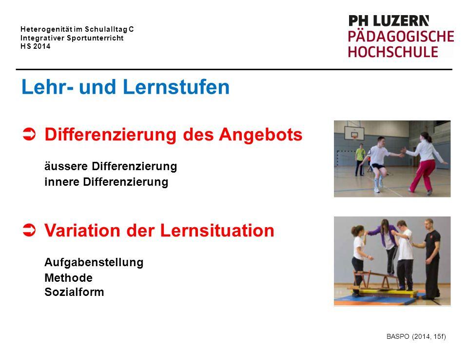 Heterogenität im Schulalltag C Integrativer Sportunterricht HS 2014 Lehr- und Lernstufen  Differenzierung des Angebots äussere Differenzierung innere