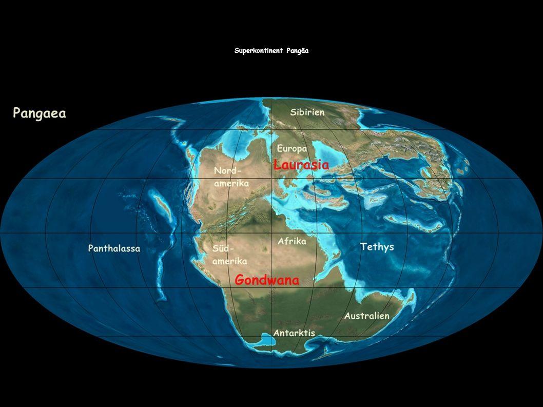 Die Geographie in der Trias die Landmassen der Süderde Gondwana und der Norderde Laurasia bildeten den Superkontinent Pangäa.