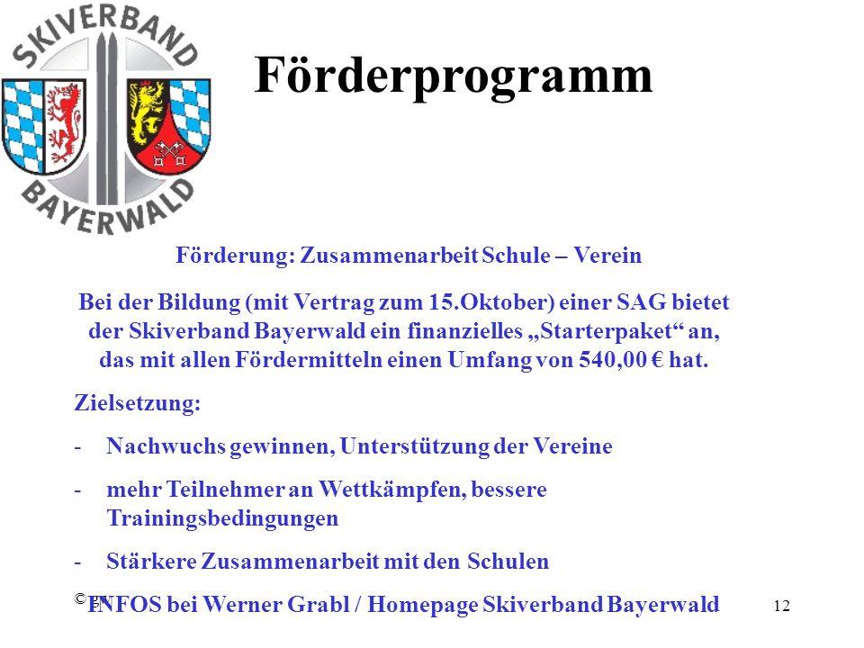 """© gw 12 Förderprogramm Förderung: Zusammenarbeit Schule – Verein Bei der Bildung (mit Vertrag zum 15.Oktober) einer SAG bietet der Skiverband Bayerwald ein finanzielles """"Starterpaket an, das mit allen Fördermitteln einen Umfang von 540,00 € hat."""
