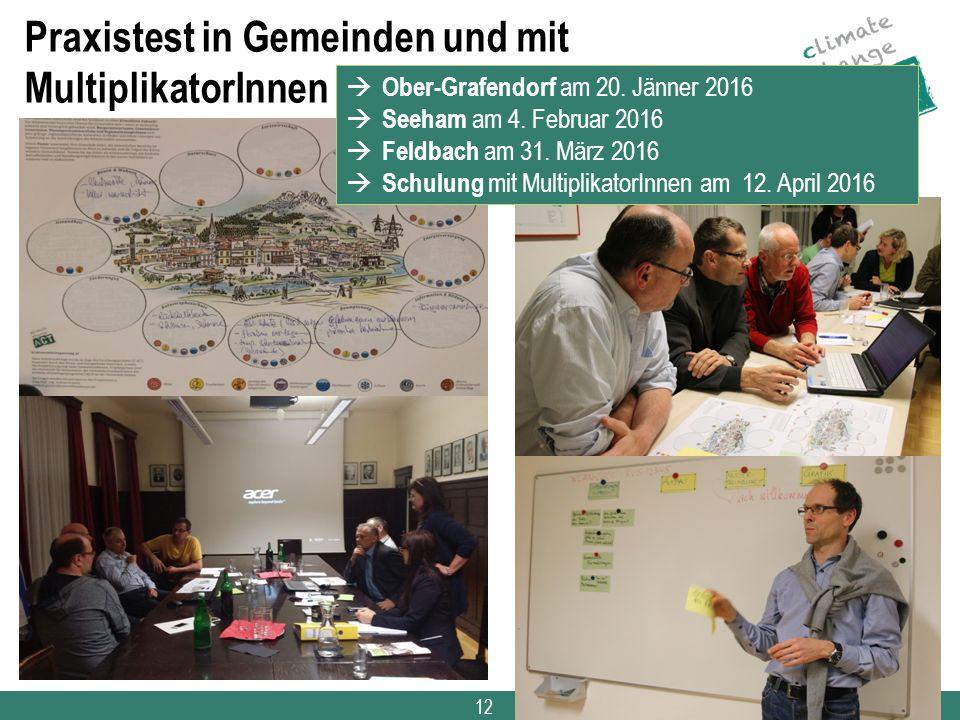 12 Praxistest in Gemeinden und mit MultiplikatorInnen  Ober-Grafendorf am 20. Jänner 2016  Seeham am 4. Februar 2016  Feldbach am 31. März 2016  S