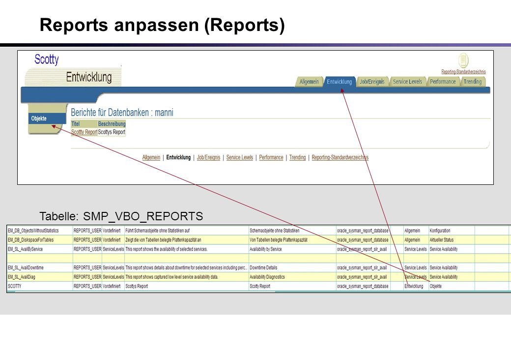 Reports anpassen (Reports) Tabelle: SMP_VBO_REPORTS